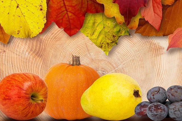 leaves-184219_640