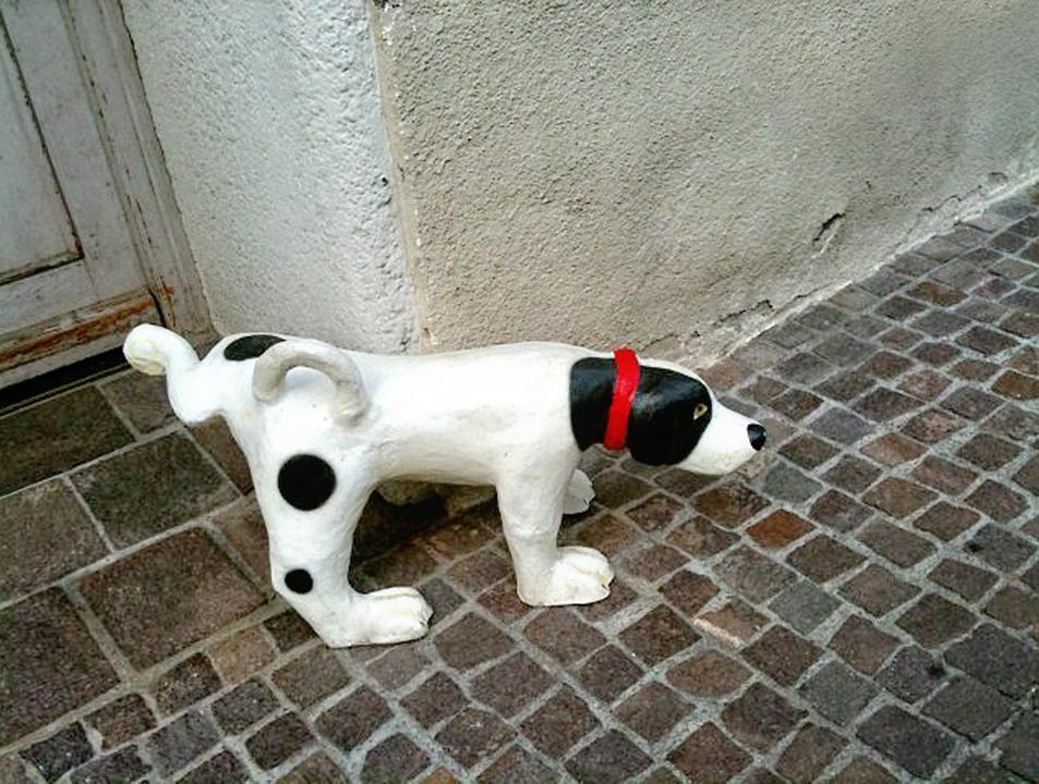 stone-dog-194453_960_720